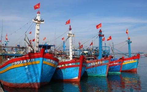Thủ tướng yêu cầu kiểm soát chặt hoạt động xuất, cập bến của tàu cá