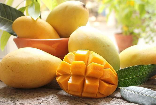 Xoài là một loại trái cây tốt cho mùa hè, chứa nhiều chất dinh dưỡng