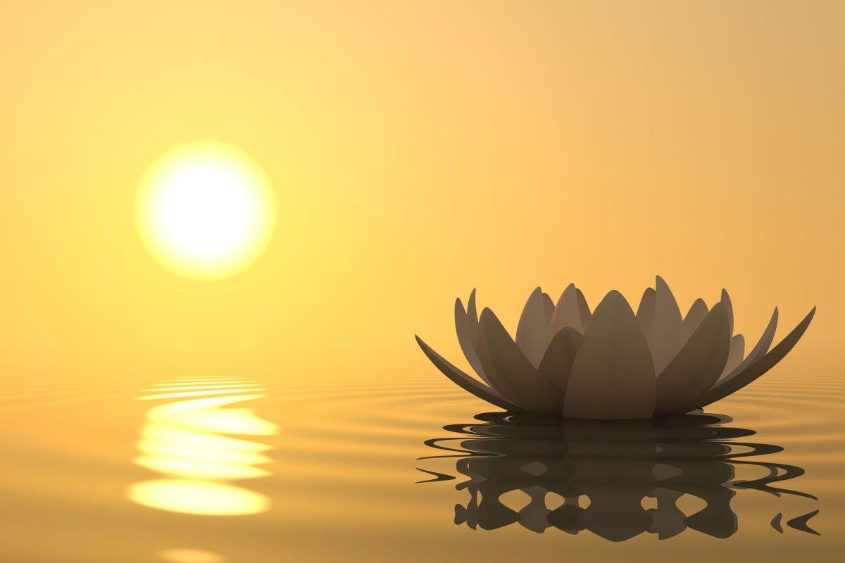 Phật dạy: 15 cách đơn giản để tĩnh tâm giữa cuộc đời đầy biến động