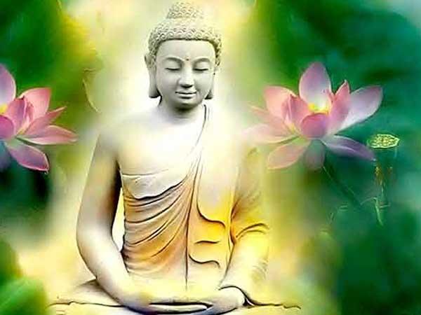 Những bài thơ hay về hoa sen dâng Phật giúp tâm thư thái