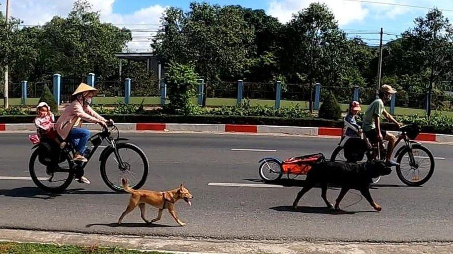 Đôi vợ chồng Việt bán nhà thực hiện chuyến đi phượt bằng xe đạp