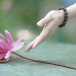Thế nào là buông xả? Bàn về sự bám víu tồn tại và sự buông xả trong đạo Phật