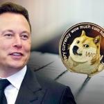 Đồng Dogecoin được tỷ phú Elon Musk đầu tư có thực sự tiềm năng?