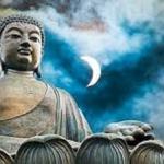 Phật dạy muốn hòa bình xin đừng sát sanh