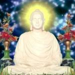 Tôn kính Phật là sức mạnh ban đầu của mọi sự tu tập