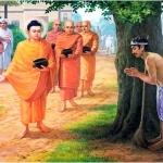 Phật dạy từ bi giúp cho người thoát ly sầu muộn khổ đau
