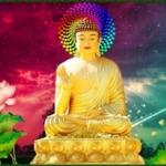 Phật dạy: Ý nghĩ ác khởi nhân quả liền xuất hiện