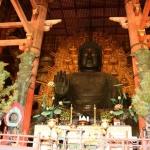 Chiêm ngưỡng vẻ đẹp ngôi chùa có bức tượng Phật bằng đồng mạ vàng lớn nhất thế giới