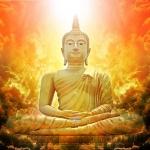 Lời Phật dạy: 5 điều giúp thay đổi hoàn toàn cuộc sống, làm được 1 điều phước phần cao thêm 1 tấc
