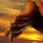 Đức Phật dạy: 4 điều không tồn tại vĩnh viễn, biết buông bỏ ắt thảnh thơi hưởng phúc Trời