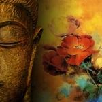 Cách niệm Phật trước khi ngủ như thế nào mới đúng?