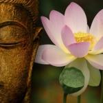3 triết lý sống của Đạo Phật giúp chúng ta có cái nhìn thoáng và nhẹ nhàng hơn về cuộc đời