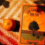 [Góc review sách] Cây cam ngọt của tôi - Khi trẻ thơ mang trong mình những nỗi đau của người lớn