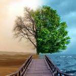 Những triết lý nhân sinh nhất định phải đọc 1 lần trong đời để giữ tâm hồn bình yên