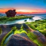 'Mùa săn rêu' ở biển Cổ Thạch, Bình Thuận - đẹp như chốn bồng lai tiên cảnh