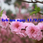 Xem lịch âm ngày 11/2/2021 chi tiết nhất