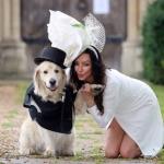 Cô người mẫu xinh đẹp quyết định cưới một chú chó làm chồng sau 220 lần hẹn hò thất bại