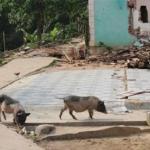Giải mã bí ẩn chuyện rợn người ở làng 'ma ám' tại Quảng Nam