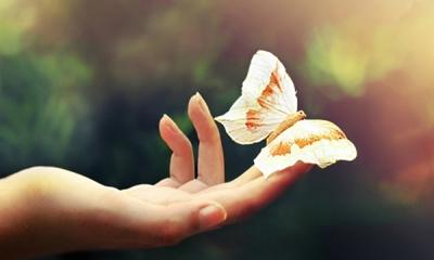 Hãy trân trọng và cảm ơn cuộc đời này về những gì mình đang có, câu chuyện ý nghĩa nhân văn